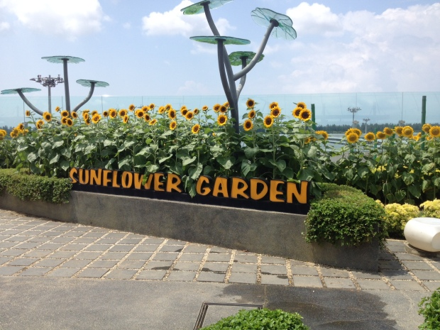 The Sunflower Garden on top of the Singapore airport.